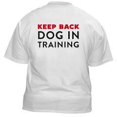 Dog Training Boarding Bay Area