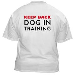 Dog in Training Gear