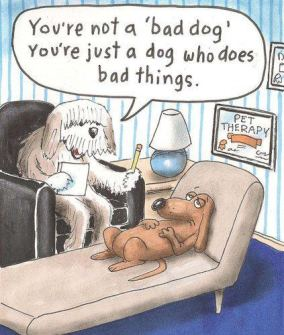 you're not a bad dog cartoon