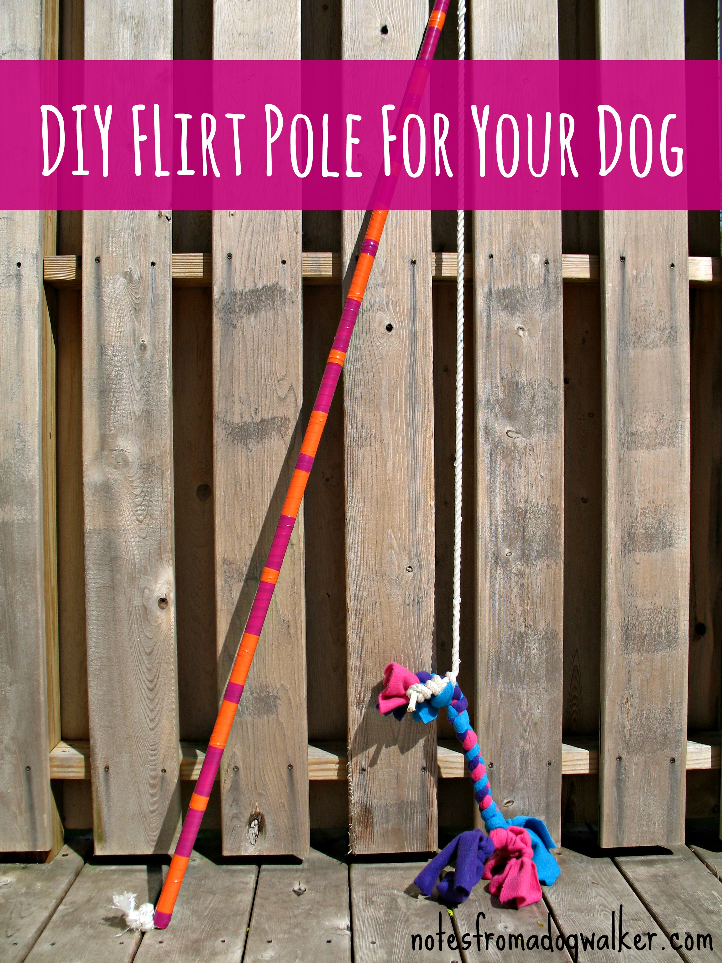 what is a flirt pole for dog training