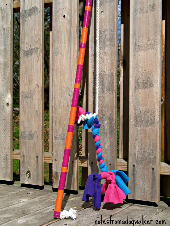Flirt Pole Dog Exercise Toy